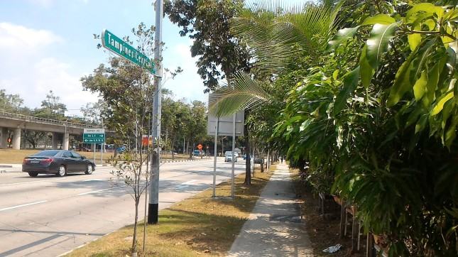 Way to Tampines Library